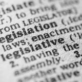 dictionary entry for the word legislation